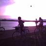 その他のカメラメーカー Digital Harinezumiで撮影した(チャリと夕陽)の写真(画像)
