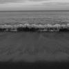 海に住む魔物