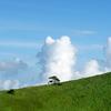 入道雲とヒト。