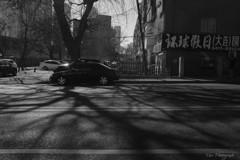 -車窓風景Ⅱ-