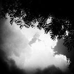 OLYMPUS E-620で撮影した(BGM無しで#7)の写真(画像)