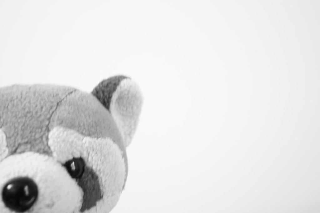 レッサーパンダ☆