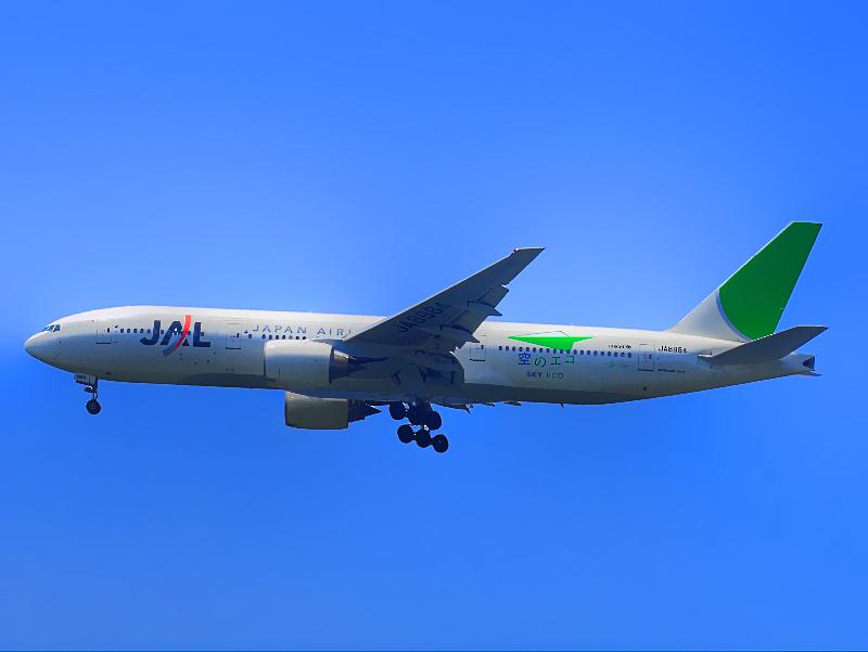JAL Eco Jet(B777-200)
