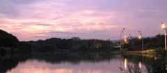 鶴見緑地公園大池の早朝