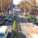 NIKON NIKON D60で撮影した風景(street)の写真(画像)