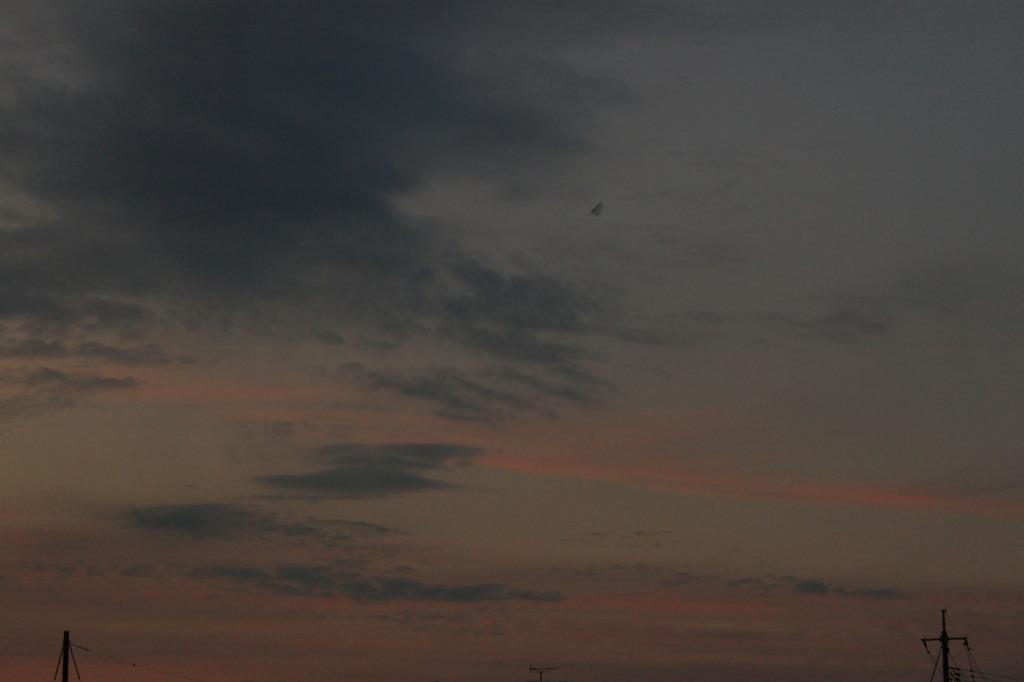 鳥?ハングライダー?UFO?
