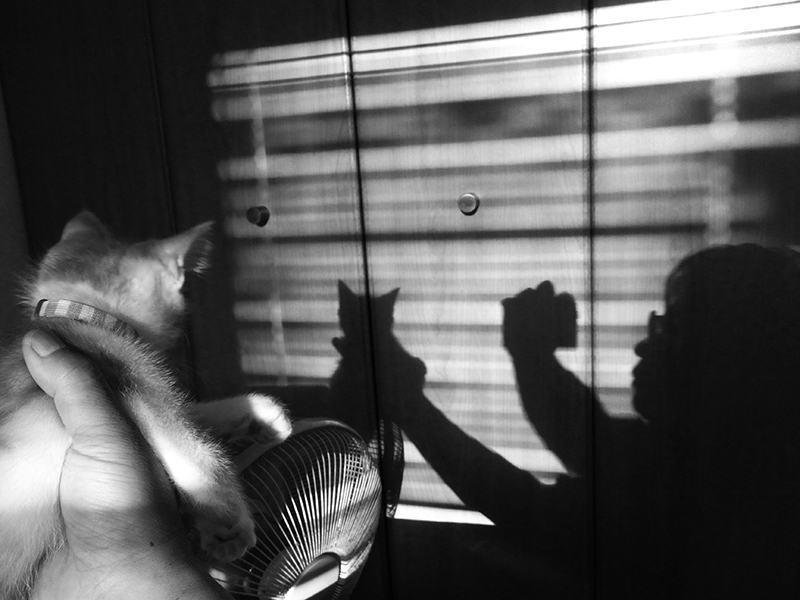 キミとボクの影