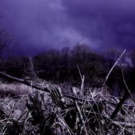 CANON Canon EOS Kiss X2で撮影した風景(FATE IS BLUE)の写真(画像)