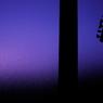 CANON Canon EOS Kiss X2で撮影したインテリア・オブジェクト(MINE NIGHT)の写真(画像)