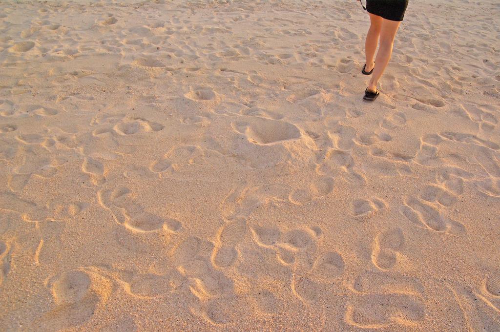 ももいろの砂