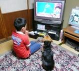テレビが大好き