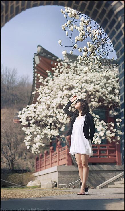 春の香・・・#3