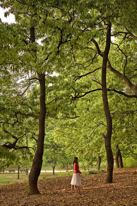 愛は森だ・・・