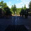 夏の暑さで汗吹く排水溝