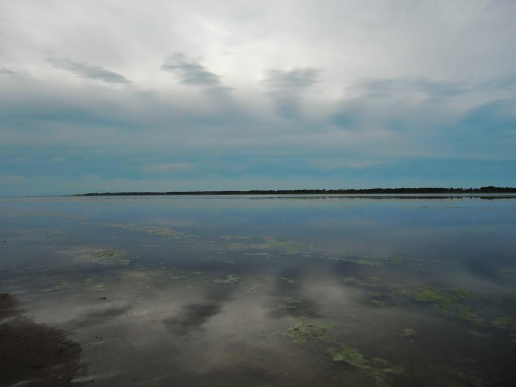 湖面は雲柄