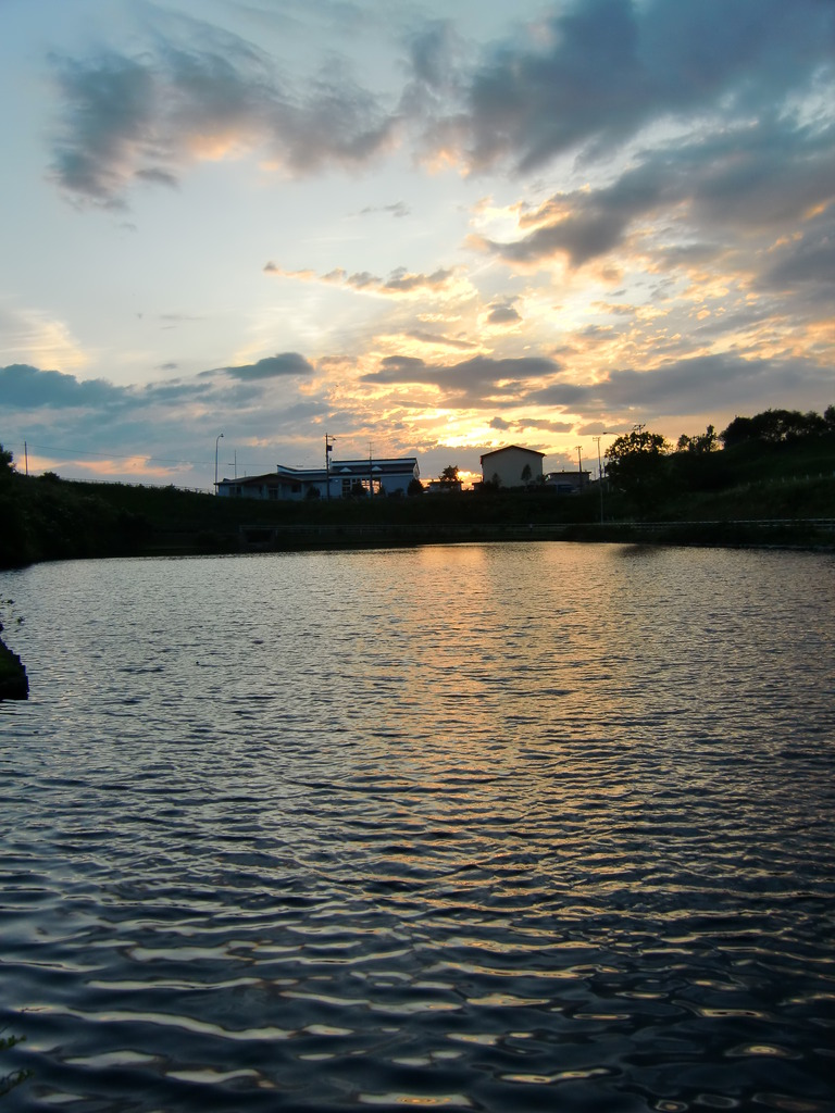 池と夕焼け