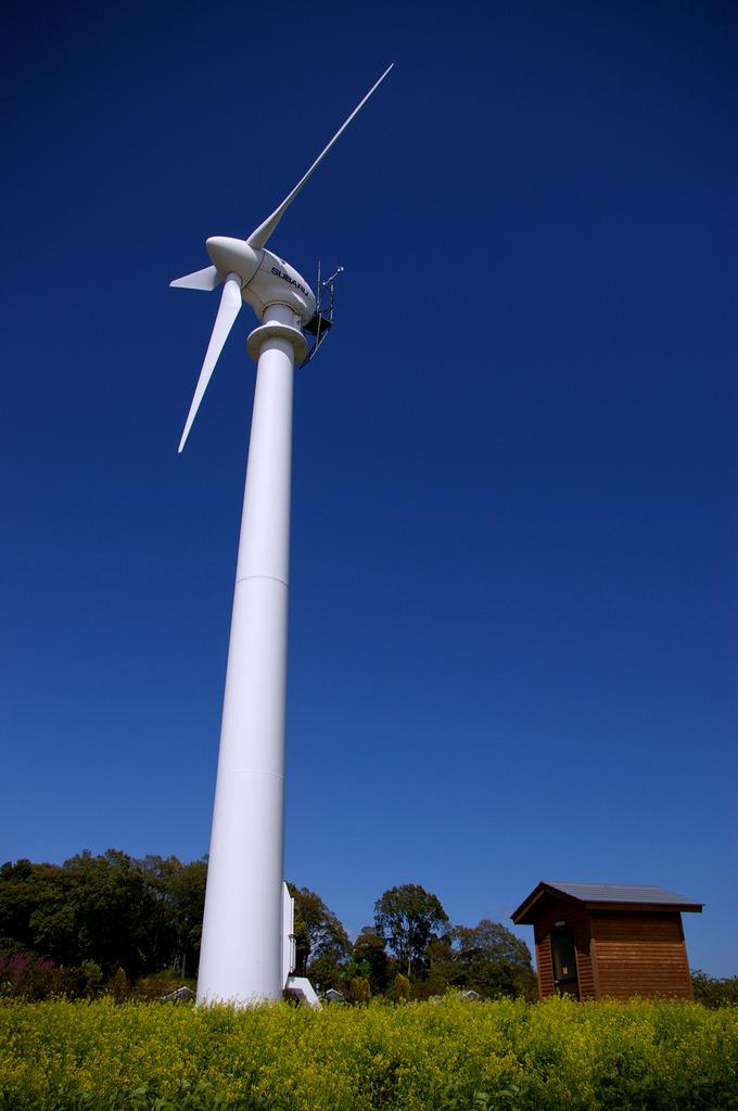 風車のある丘