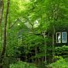 森の家 ~回帰~