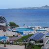 美ら海水族館 イルカジャンプ