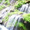 吐竜の滝5