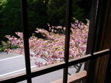 富士 天下茶屋 2階から 2