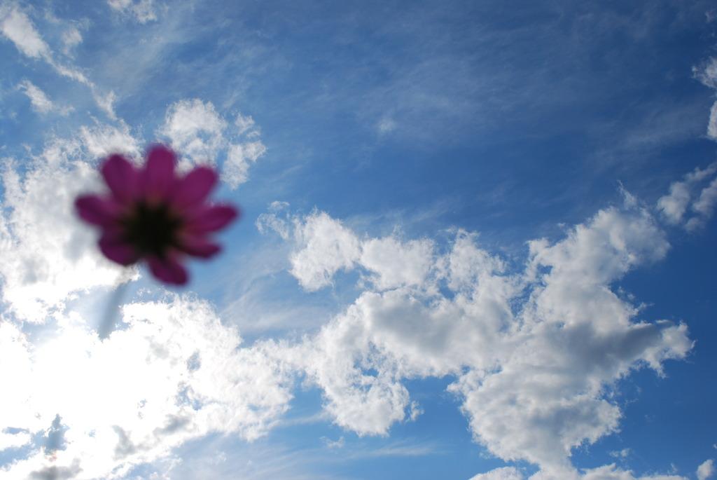 空を見上げてみて