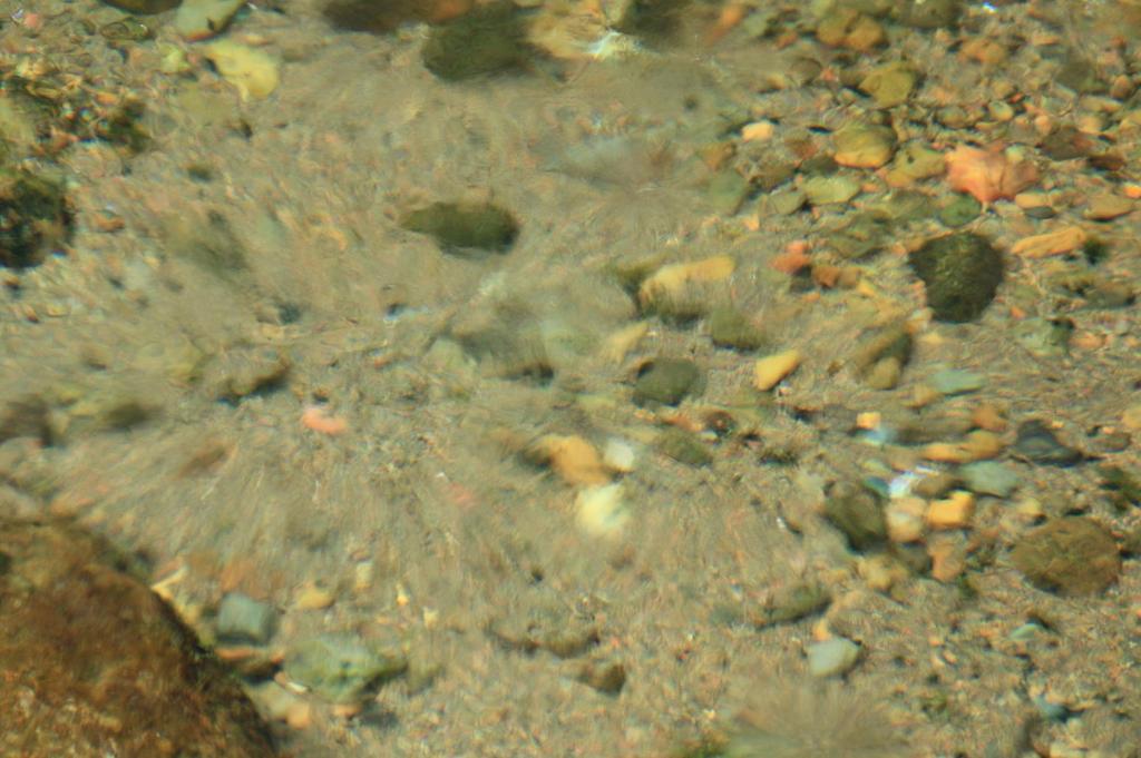 水の生まれる場所