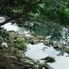 川 そのいち
