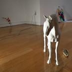 PANASONIC DMC-LX3で撮影した動物(スタジオに立つ白い馬)の写真(画像)
