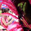 真夏のサンバパレード