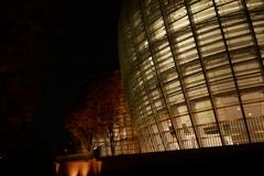 日没後の国立新美術館