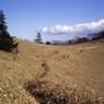 FUJIFILM GS645S Professionalで撮影した風景(石丸峠から大菩薩へ)の写真(画像)
