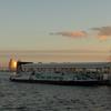 日の出桟橋のHIMIKO