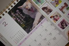 ニャンニャンニャンの日にネコの切手♪