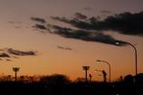 染まる冬の夕空の、下に並ぶ街灯の色