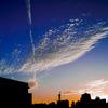 高積雲と飛行機雲