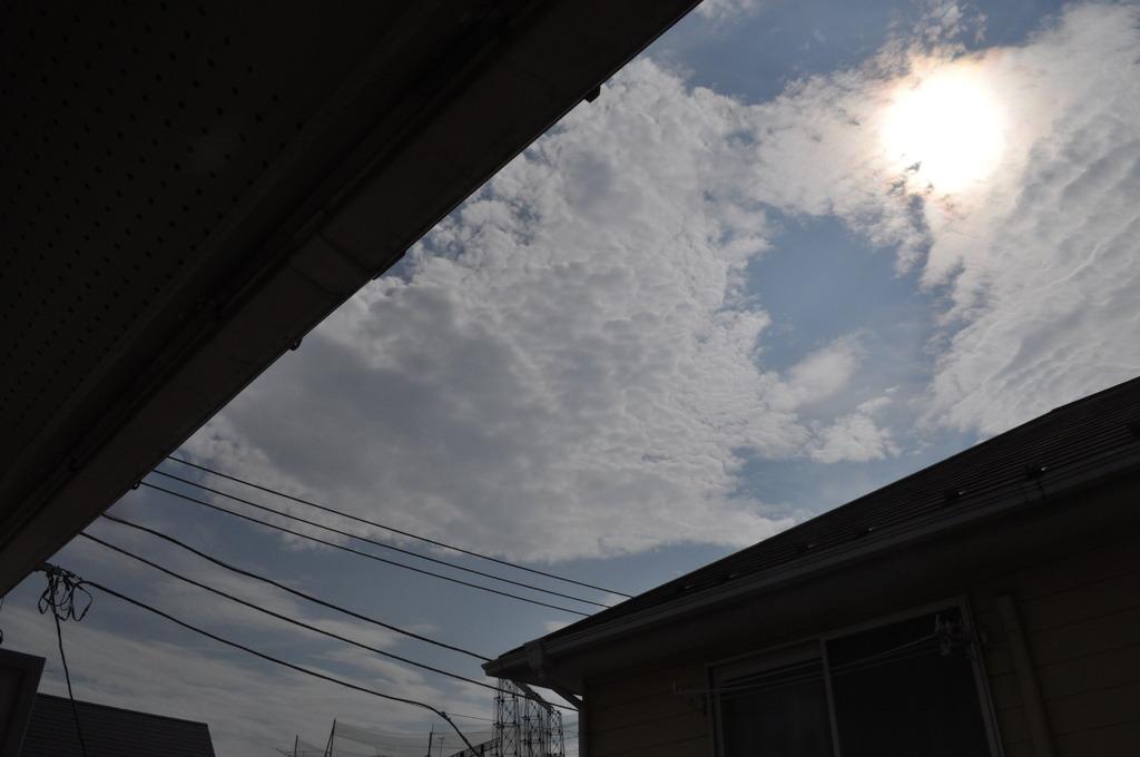 間から見える空