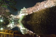 夜桜イルミネーション