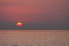 海辺の朝日