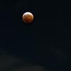月食 2014