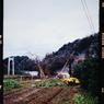 その他のカメラメーカー その他のカメラで撮影した風景(近くの畑)の写真(画像)