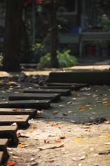 秋と・・・