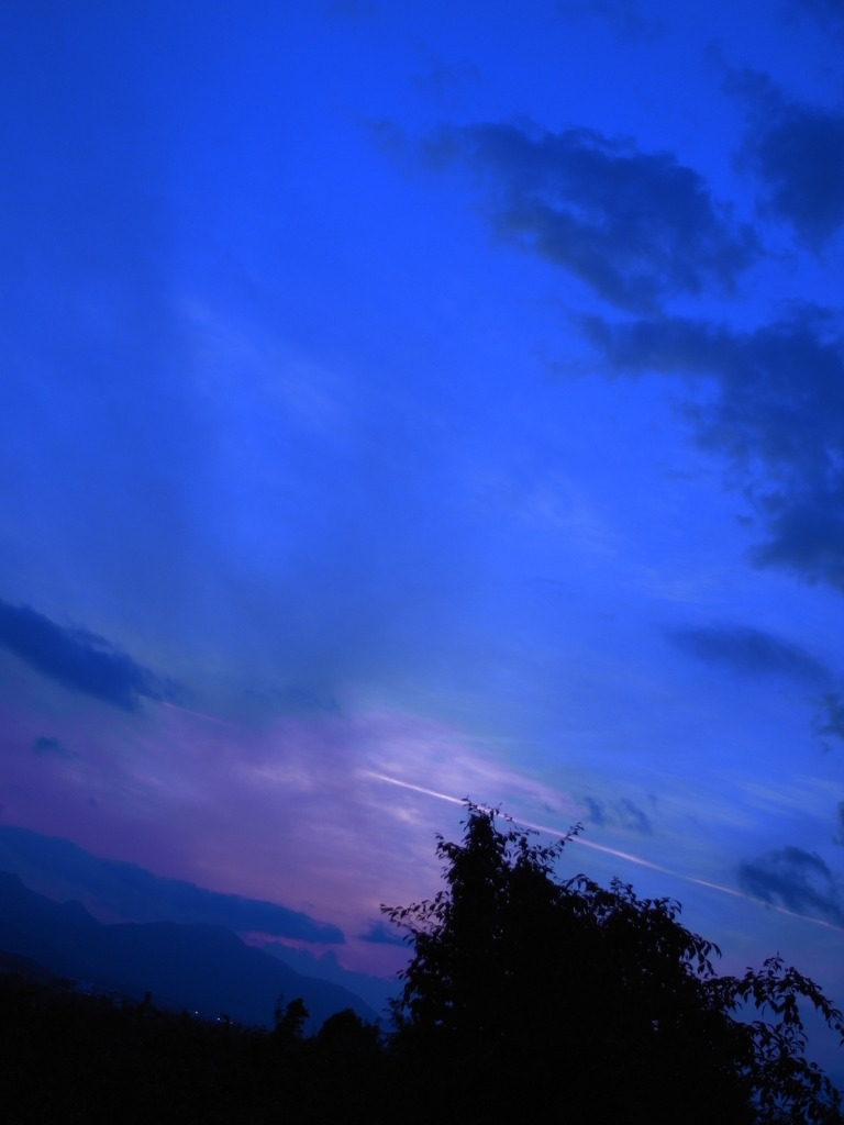 photo243710