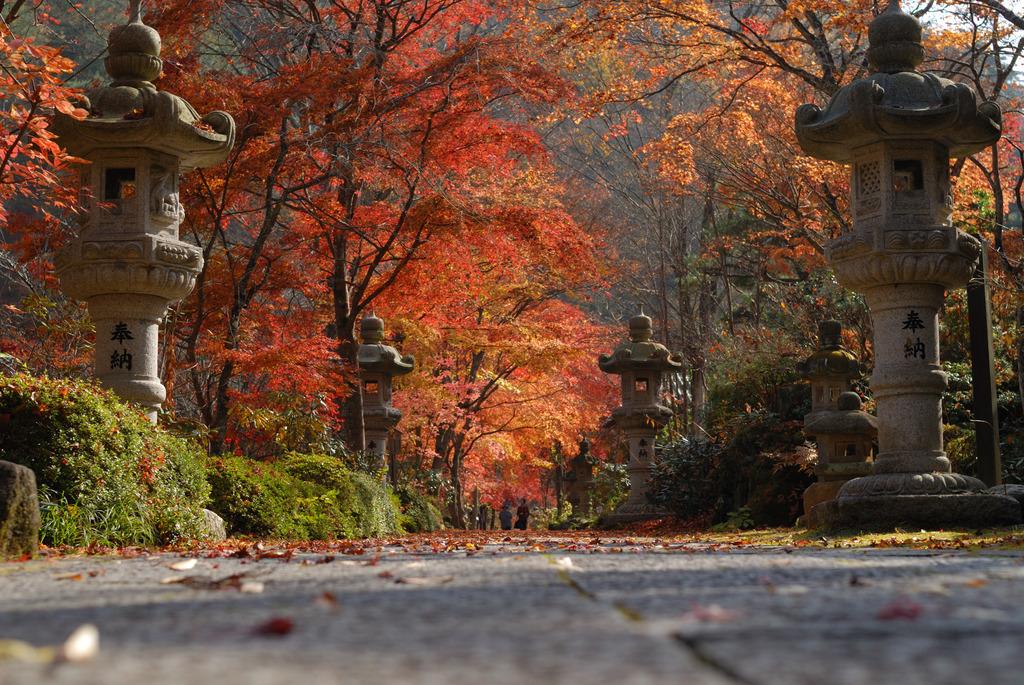 秋の参拝しましょう