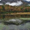 沼の奥で雲があ生まれる