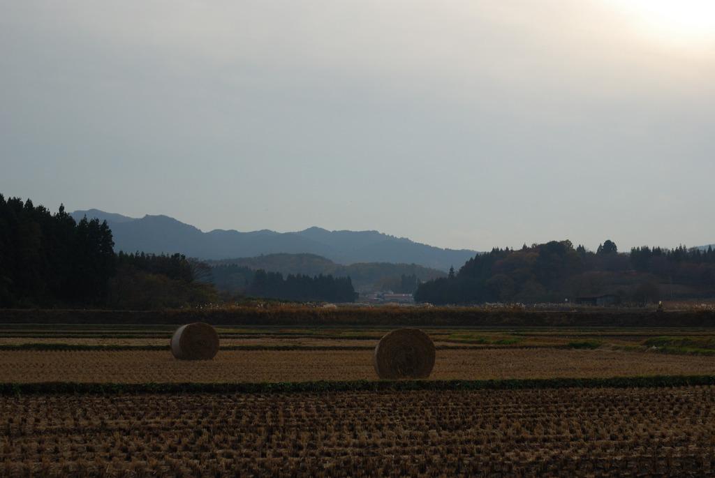 とある田舎の風景