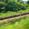 OLYMPUS E-P1で撮影した風景(20090823大井川3)の写真(画像)