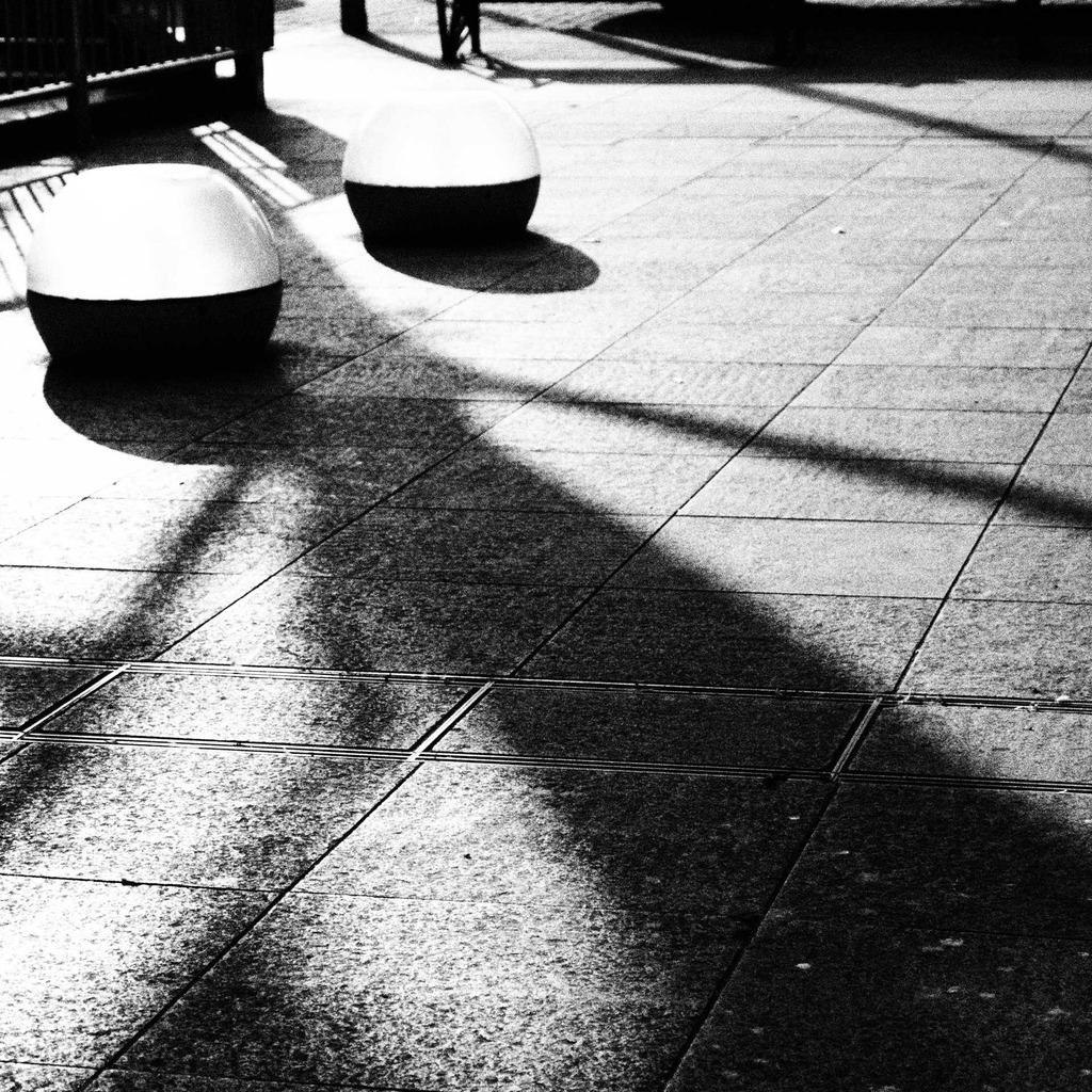 20090823青葉公園4