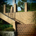 OLYMPUS E-P1で撮影した風景(20090823常盤公園)の写真(画像)