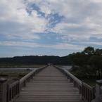 OLYMPUS E-P1で撮影した風景(20090823蓬莱橋8)の写真(画像)